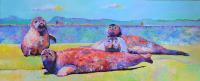 Zeehonden - Henk van Donk