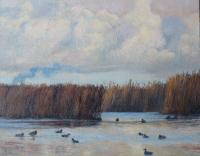 Lauwersmeer - Robin d'Arcy Shillcock